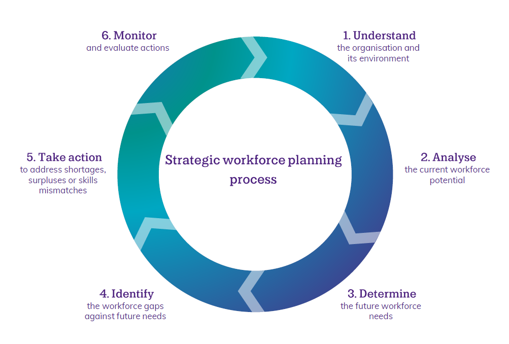 1. Understand the organisation, 2. Analyse the current workforce potential, 3. Determine future needs, 4. Identify gaps, 5. Take action, 6. Monitor and evaluate